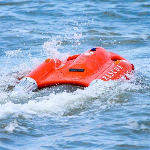 Dolphin1 ドルフィン1 使用例